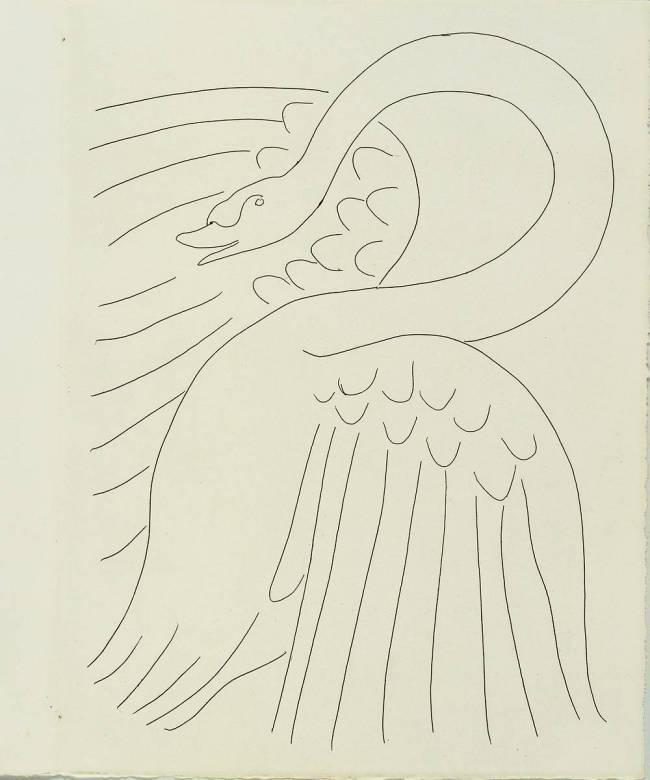 Le Cygne 1932 De Henri Matisse Reproduction D Art Haut De Gamme