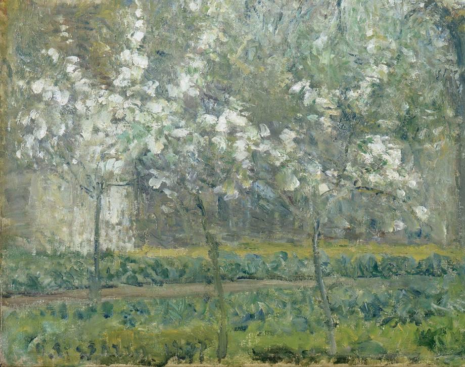 Printemps pruniers en fleurs dit potager arbres en for Camille pissarro oeuvre