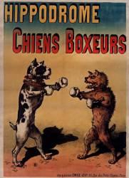 Chiens boxeurs (Anonyme) - Muzeo.com