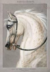 Harnachement de Troupe des Corps de grosse Cavalerie (Carle Vernet) - Muzeo.com