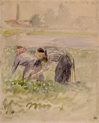 La Cueillette des pois (Camille Pissarro) - Muzeo.com