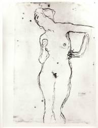 Nu (Gustav Klimt) - Muzeo.com