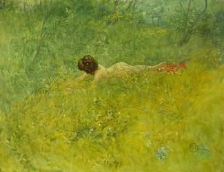Sur l'herbe (Carl Larsson) - Muzeo.com