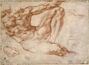 Figure d'Adam à la Chapelle Sixtine (Michel-Ange) - Muzeo.com