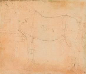Etude de cheval (De Vinci Léonard) - Muzeo.com