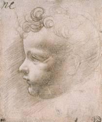 Etude pour L'Enfant Jésus de Vierge aux Rochers (Louvre) (Léonard de Vinci) - Muzeo.com