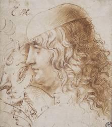 Profil de jeune homme aux cheveux longs, et autres études de têtes (Léonard de Vinci) - Muzeo.com