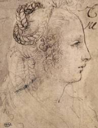 Tête de femme de profil, les cheveux nattés (Léonard de Vinci) - Muzeo.com