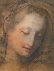 Tête de femme, de trois quarts et penchée vers la droite, les yeux baissés (Barocci Federico dit Le...) - Muzeo.com