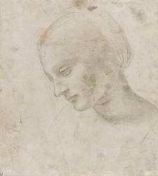 Tête de femme presque de profil (Léonard de Vinci) - Muzeo.com