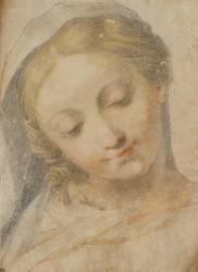 Tête de jeune femme souriante et regardant vers le bas (Frederico Barrocci) - Muzeo.com