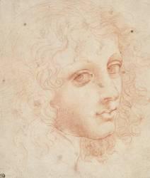 Tête de jeune homme aux cheveux bouclés, de trois quarts vers la droite (Léonard de Vinci) - Muzeo.com