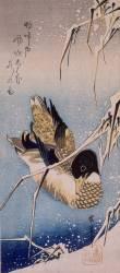 Canard et roseaux sous la neige (Hiroshige) - Muzeo.com
