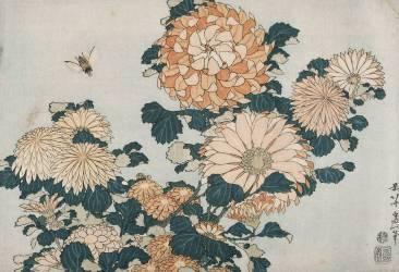 Chrysanthèmes et taon (Hokusai) - Muzeo.com