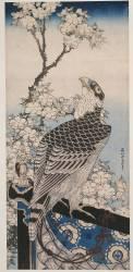 Faucon et prunier en fleurs (Hokusai) - Muzeo.com