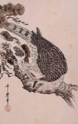 Faucon sur une branche de pin (Kitagawa Utamaro) - Muzeo.com