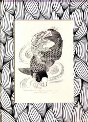 Kouanon, la déesse de la grâce, sur un poisson - oeuvre encadrée (Hokusai) - Muzeo.com