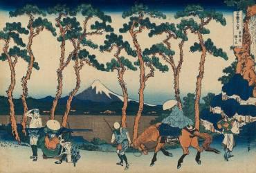 Le mont Fuji vu à travers les pins de Hodogaya sur le Tôkaidô (Trente-six vues du mont Fuji, 36) (Hokusai) - Muzeo.com