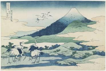 Les champs du hameau d'Umezawa dans la province de Sagami (Hokusai) - Muzeo.com