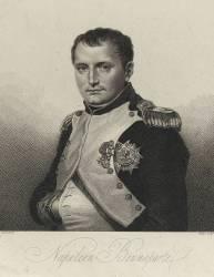 Portrait de Napoléon en colonel (,D'après David Jacques Louis) - Muzeo.com