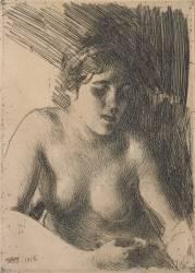 Buste de nu féminin (Anders Leonard Zorn) - Muzeo.com