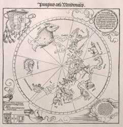 Carte du Ciel du Sud, avec des représentations de constellations (Dürer Albrecht) - Muzeo.com
