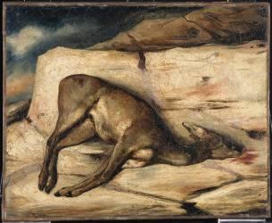 Biche gisant sur un rocher taché de son sang (Alexandre Gabriel Decamps) - Muzeo.com