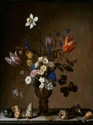 Bouquet de fleurs et coquillages (Van der Ast Balthasar) - Muzeo.com