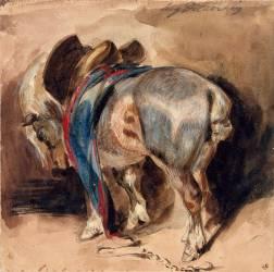Cheval tourné à gauche (Eugène Delacroix) - Muzeo.com