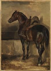 Cheval turc dans une écurie (Théodore Géricault) - Muzeo.com