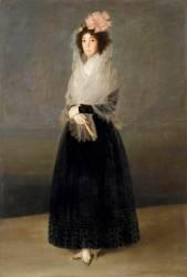La comtesse del Carpio, marquise de la Solana (1737-1795) ( Francisco De Goya) - Muzeo.com
