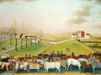 La ferme Cornell (Edward Hicks) - Muzeo.com