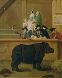 Le Rhinocéros (Pietro Longhi) - Muzeo.com