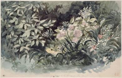 Parterre de fleurs avec hortensias roses, scylles bleutés et anémones rouges (Eugène Delacroix) - Muzeo.com