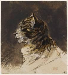 Tête de chat (Eugène Delacroix) - Muzeo.com
