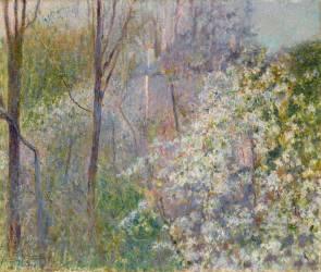 Arbres en fleurs (Macchiati Serafino) - Muzeo.com