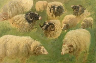Béliers et moutons à tête noire, 10 esquisses (Rosa Bonheur) - Muzeo.com