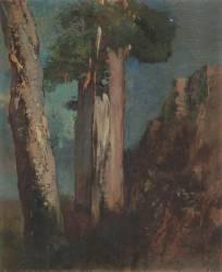 Bouleaux à Bièvres (Odilon Redon) - Muzeo.com