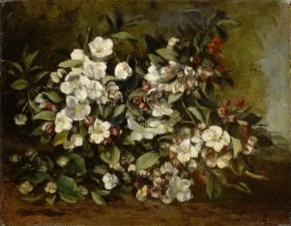 Branche de pommier en fleurs dit aussi Fleurs de cerisiers (Courbet Gustave) - Muzeo.com
