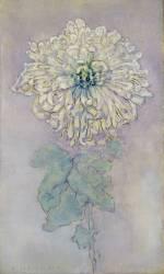 Chrysanthème (Mondrian Piet) - Muzeo.com