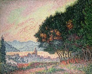 Forêt près de Saint-Tropez (Paul Signac) - Muzeo.com