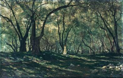 Jeune fille sous les oliviers - Menton (Brokman Henry) - Muzeo.com