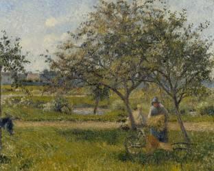 La brouette, verger (Camille Pissarro) - Muzeo.com