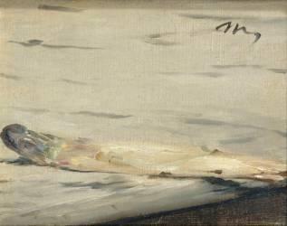 L'asperge (Edouard Manet) - Muzeo.com