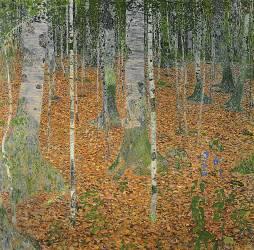 Le bois de bouleaux (Klimt Gustav) - Muzeo.com