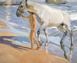 Le Cheval blanc (Joaquin Sorolla y Bastida) - Muzeo.com