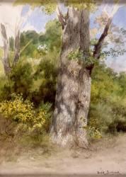 Le Gros chêne-recto (Rosa Bonheur) - Muzeo.com