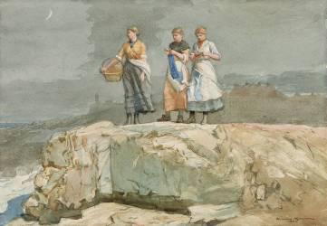 Les Falaises (Winslow Homer) - Muzeo.com