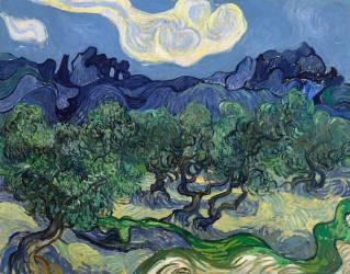 Les Oliviers (Vincent van Gogh) - Muzeo.com
