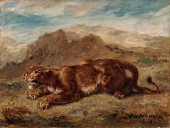 Lionne prête à s'élancer (Eugène Delacroix) - Muzeo.com